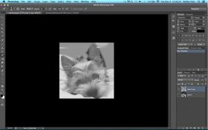 Screen Shot 2012-12-04 at 1.56.24 PM